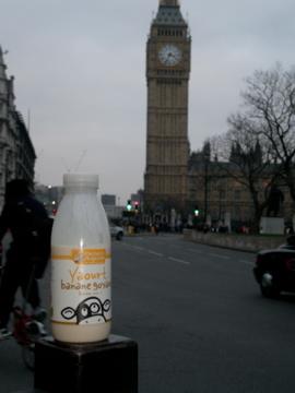 Vache & Big Ben